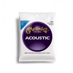 Martin Acoustic M550