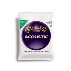 Martin Acoustic M500 12 Strings