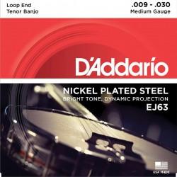 D'Addario EJ63 Tenor Banjo 4 Strings