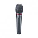 Microphones de chant